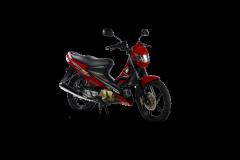 Yamaha Raider J Pro motorcycle