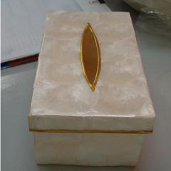 Tissue Holder-38