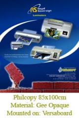 Corporate or Product Brochures