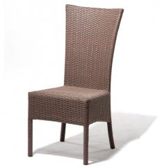 Galapagos Dining Chair