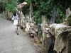 Aquarium Driftwoods Naturale