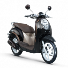 Scoopy scooter
