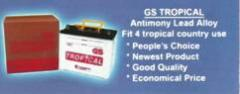 GS Tropical Battery