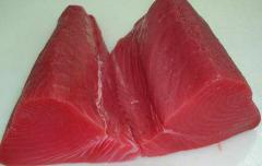 Tuna Seafood
