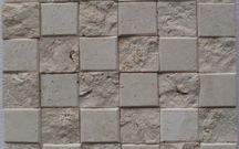 Coral / Shell Stone Mosaic