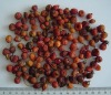 Rosehips  Dried