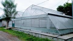 GREENHOUSE Multi Span 640sqm / 20mx32m