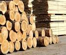 Sawn Timber for Various Purposes
