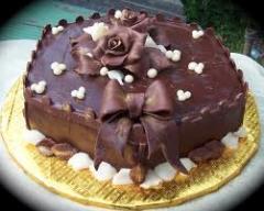 Choco-Cake (half roll)