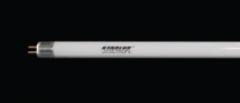 T5 Linear Lamps