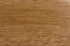 Wood Shorea Negrosensis