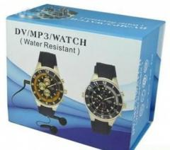 D1 Stainless 4GB SPY Watch