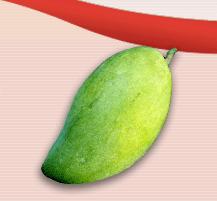 Green Mango Purée