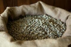 Philippines Arabica Coffee