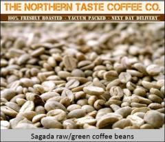 Freshly Roasted Coffee Beans Supplier