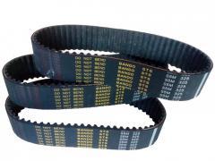 Timing Belt and V-Belt