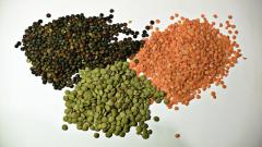 Wholesale new crop organic lentils market price