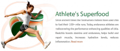 Chia super food for athletes