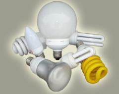 Straight Fluorescent and Compact Fluorescent Lamp