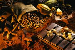 Antonio Pueo Unsweetened COOKING Chocolate