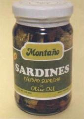 Bottled Sardines