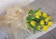 1 dozen tulips
