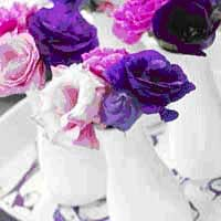 Lovely Lisianthus