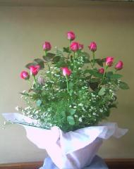 12 pink Roses in a Basket USD$40.00