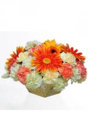 Bouquet One Fine Day