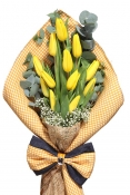 A bouquet of Dutch tulips