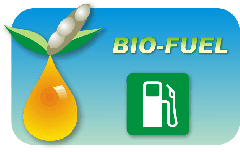 Biofuel from Coconut