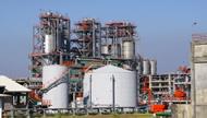 Motor Fuel Industry