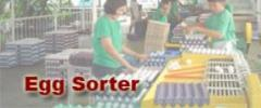 Egg Sorter classifies