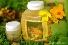 Fresh Bee Pollen - Large Bottle