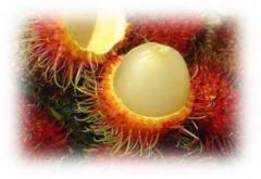 Fresh  Seafood Rambutan