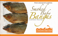 Smoked Fish Marine