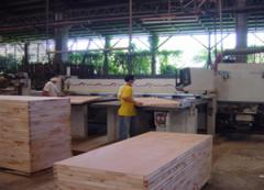 Particleboard (Pb) boards