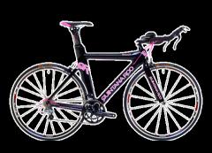 2011 Quintana Roo Dulce Bike