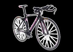 2011 Quintana Roo Chicqilo Bike
