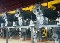 Coconut Oil Mill