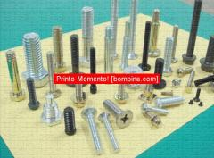 Fasteners, Stainless Steel