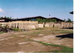 Tropical Wood Cutting