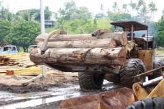 Tropical Timber Array