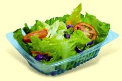 Food  Salad Packaging Container