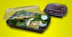 Salad Tray & Lid (Big)