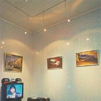 PVC Walls & Ceiling Panel