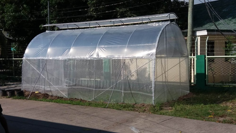 small_greenhouse_low_cost