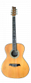 RJ MASA II Acoustic Guitar