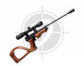 Crosman Outdoorsman 2250xe airguns