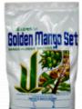 PGR Golden Mango Set